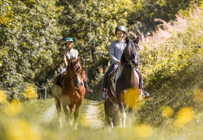 Riding horses in Provence